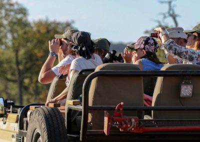 safari-adventure-img1-v1