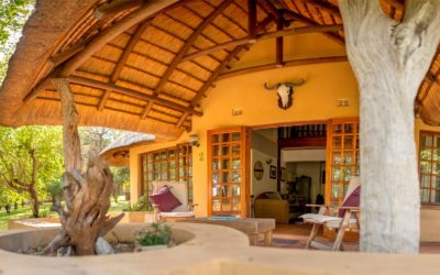 nDzuti Safari Camp PLUS: 4 Night Package and a day trip into the Kruger National Park.
